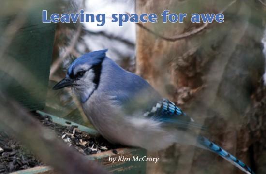 LeavingSpace