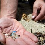 Microplastics-Credit-Joe-Dowling-Sustainable-Coastlines-Marine-Photobank