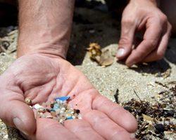 Microplastics-Credit-Joe-Dowling-Sustainable-Coastlines-Marine-Photobank