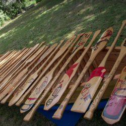 P10 - Final Paddles