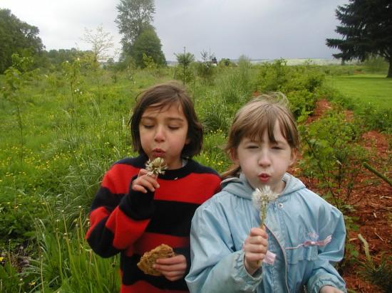 seedsofawareness