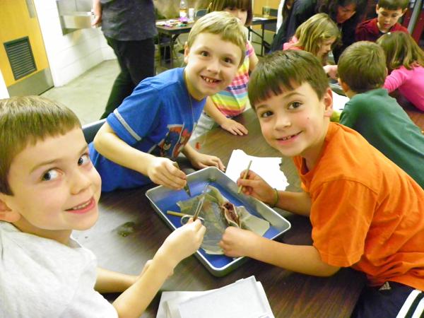 Environmental Education Activities K-12