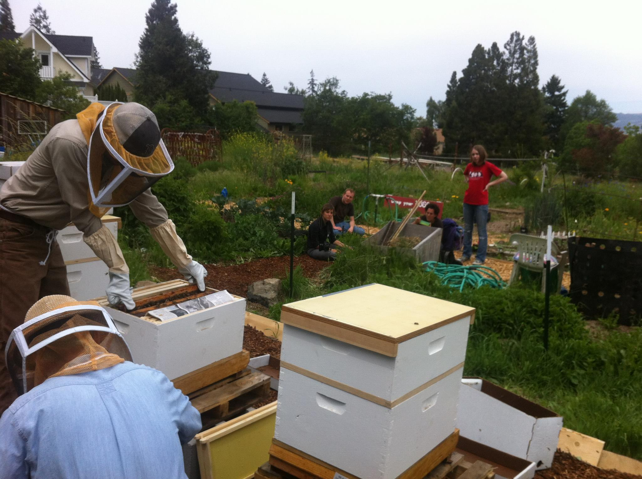 Honeybee Heroes: Ryan King at Southern Oregon University