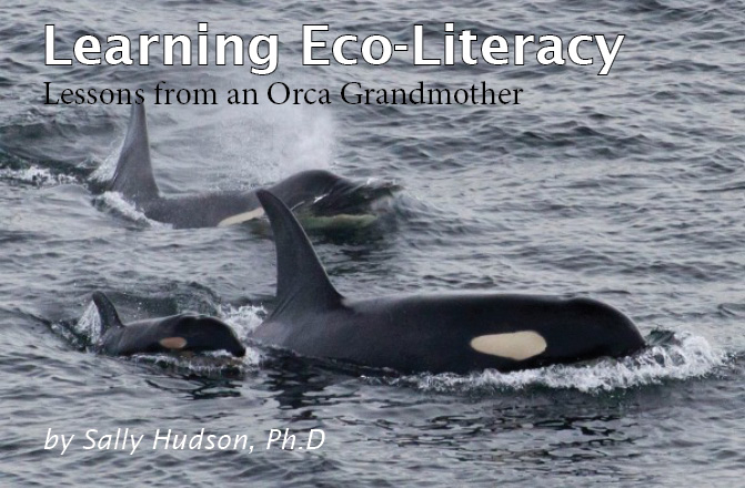 Learning Eco-Literacy (Lessons from an Orca Grandmother)