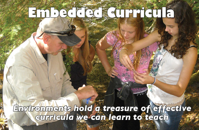 Embedded Curricula: Environments hold a treasure of effective curricula we can learn to teach