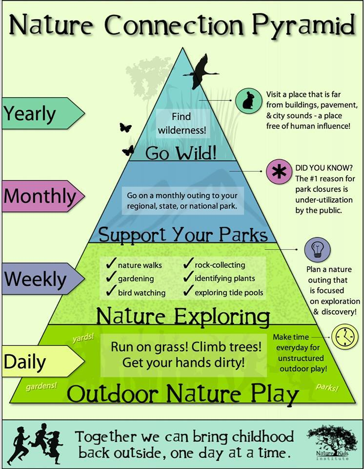 Nature Connection Pyramid