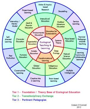 Teaching and Learning Ecologically