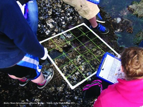 Ocean Literacy & OCAMP