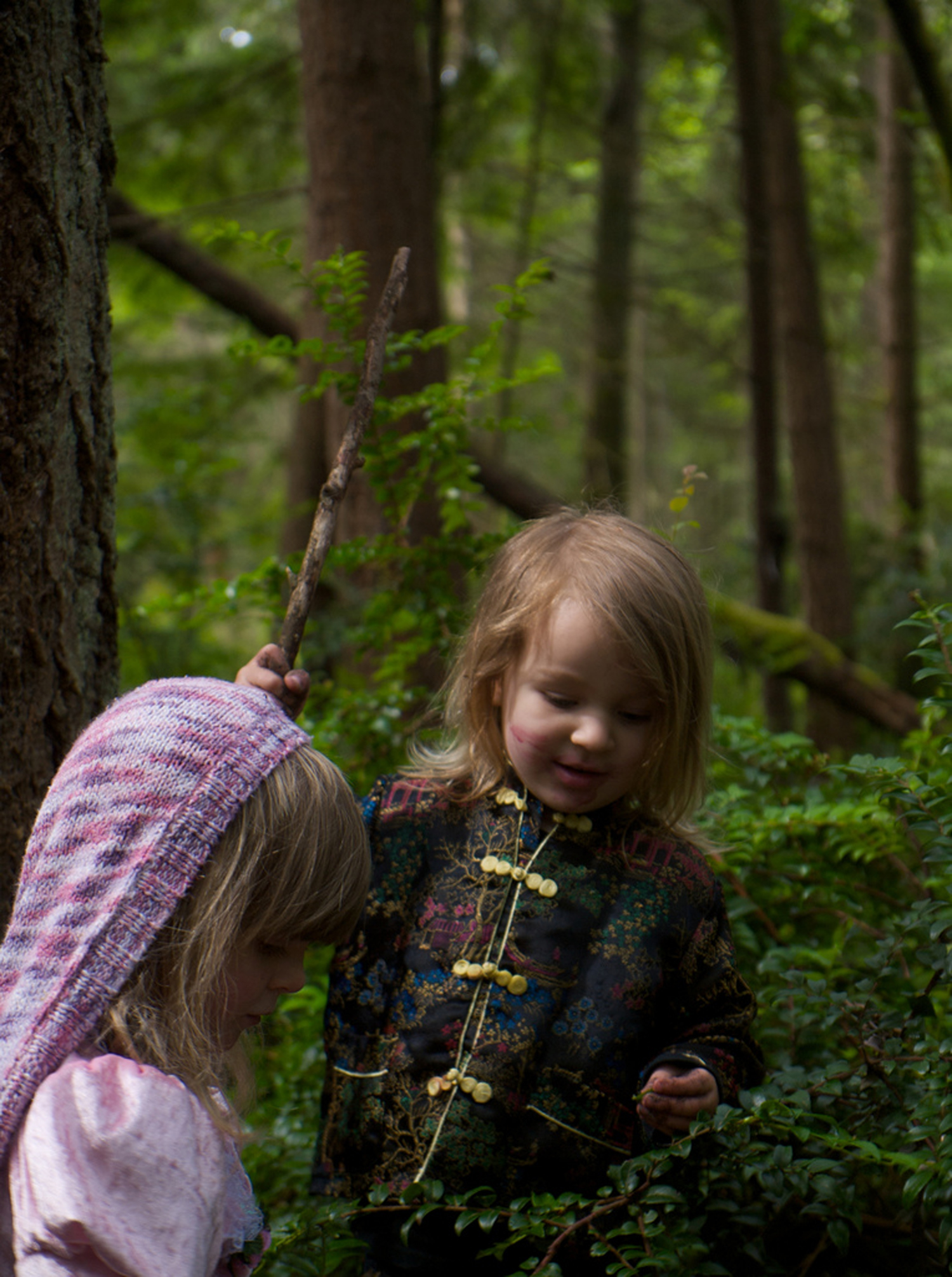 Forest Schools and the Benefits of Unstructured Outdoor Play