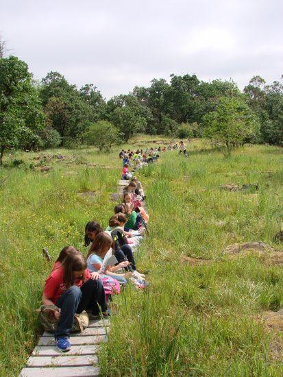 Connecting to the Natural World – Biome Bonanza!