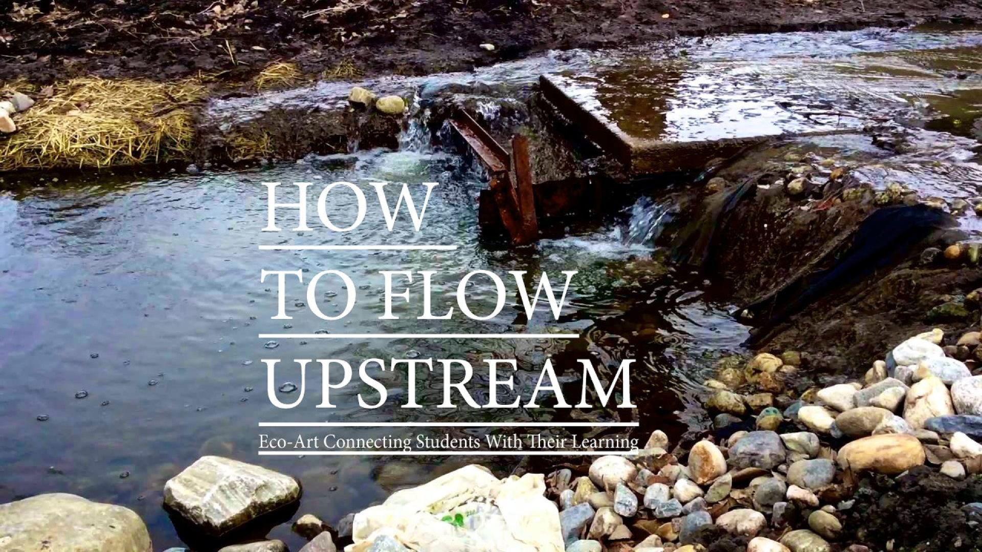 Eco-Art: How to Flow Upstream