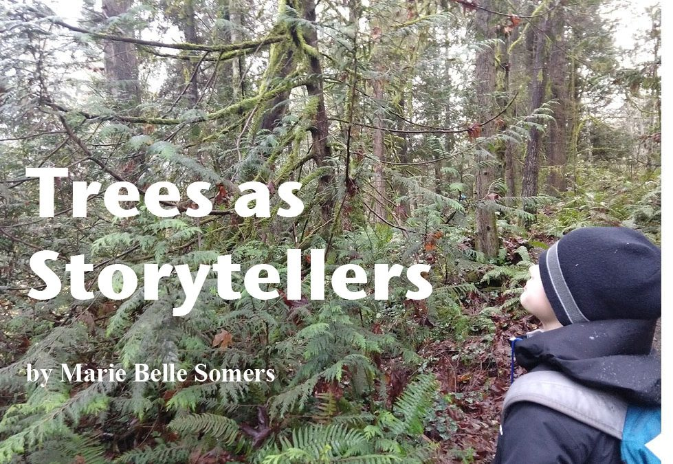 Trees as Storytellers