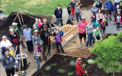 Bringing Nature Back to the Schoolyard